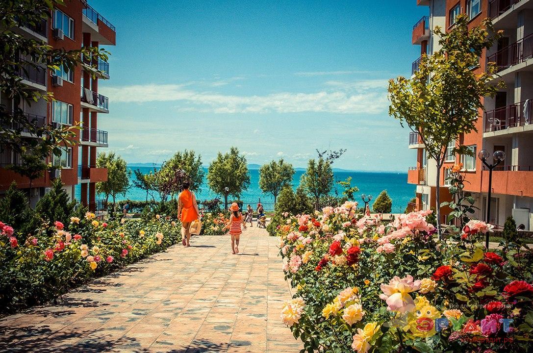 Картинки по запросу яркие фото болгарии